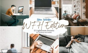 WFH Edition Lightroom Presets