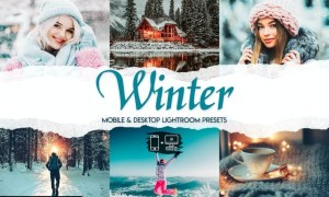 Winter - 15 Premium Lightroom Presets