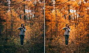 10 AUTUMN VIBES Lightroom Preset 5473333