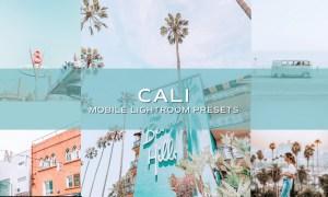 5 Cali Blogger Lightroom Presets 5698888
