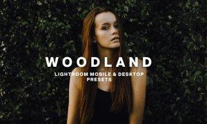 WOODLAND Lightroom Presets 5373041