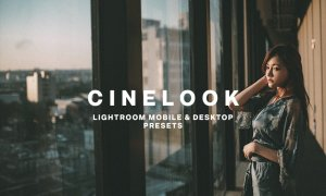 CINELOOK LIGHTROOM PRESETS 5756350