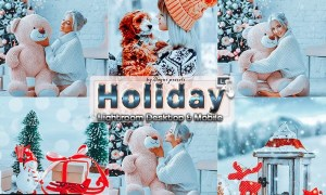 Moody Holiday Lightroom Presets