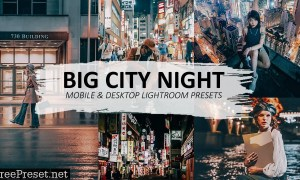 Night Photography Lightroom Preset 5597802