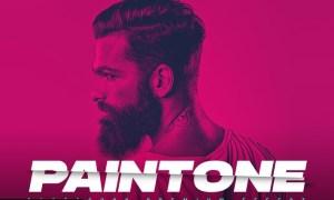 Paintone Photoshop Action - Duotone & Painting P3DFCUD