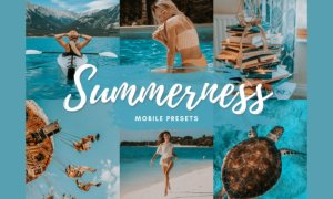 SUMMERNESS Mobile Lightroom Presets 5712586