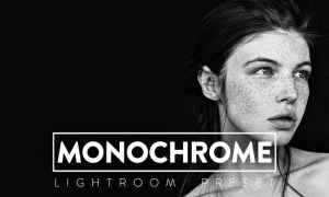 10 Monochrome Lightroom Presets