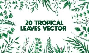 20 floral Leaves Bundle LL44Z72