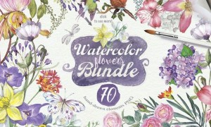 70 SUMMER FLOWERS PNG 4QWSAA