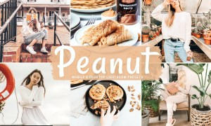 Peanut Mobile & Desktop Lightroom Presets