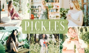 Pickles Mobile & Desktop Lightroom Presets