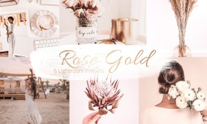 Rose Gold Collection - Lr Presets 5842160