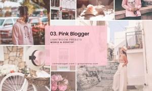 03. Pink Blogger - Presets 2832717