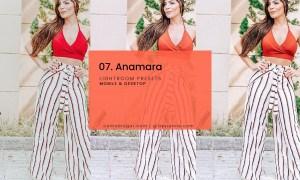 07. Anamara Blogger Presets
