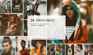25. VSCO VSCO - Lightroom Presets