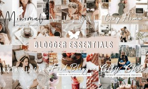 BLOGGER LIGHTROOM PRESETS BUNDLE 5989563