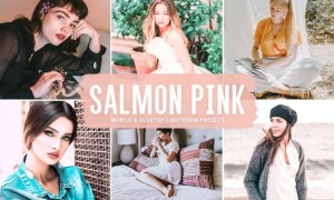 Salmon Pink Mobile & Desktop Lightroom Presets