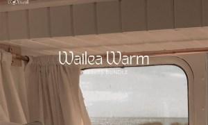 Wailea Warm Presets 5977865