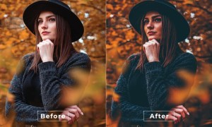 Antonia Desktop and Mobile Lightroom Preset