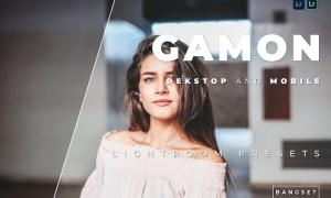 Gamon Desktop and Mobile Lightroom Preset
