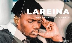 Lareina Desktop and Mobile Lightroom Preset