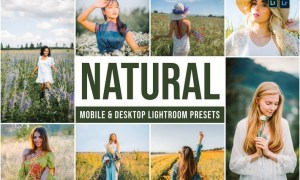 Natural Mobile and Desktop Lightroom Presets