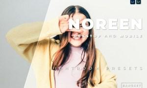 Noreen Desktop and Mobile Lightroom Preset