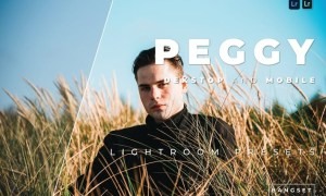 Peggy Desktop and Mobile Lightroom Preset