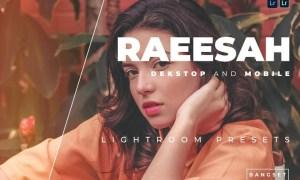 Raeesah Desktop and Mobile Lightroom Preset