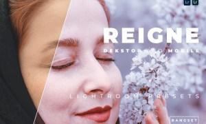 Reigne Desktop and Mobile Lightroom Preset
