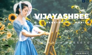 Vijayashree Desktop and Mobile Lightroom Preset