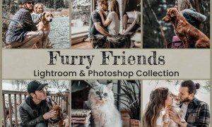 15 Furry Friends Collection 6204182