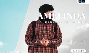 Amelinda Desktop and Mobile Lightroom Preset