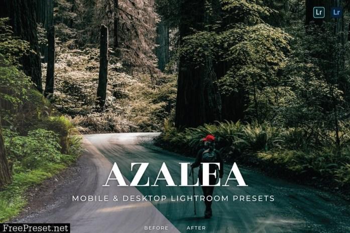 Azalea Mobile and Desktop Lightroom Presets