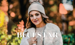 Bluestar Mobile and Desktop Lightroom Presets