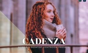 Cadenza Mobile and Desktop Lightroom Presets
