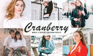 Cranberry Mobile & Desktop Lightroom Presets