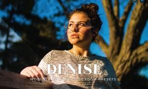 Denise Mobile and Desktop Lightroom Presets