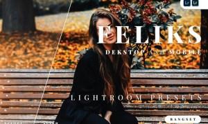 Feliks Desktop and Mobile Lightroom Preset