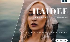 Haidee Desktop and Mobile Lightroom Preset