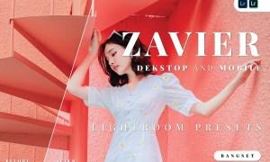 Zavier Desktop and Mobile Lightroom Preset
