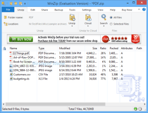 WinZip Pro 25 Crack With Registration Code (2021)