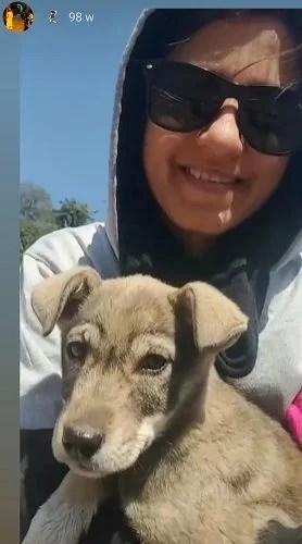 Niharika Kundu with a street dog
