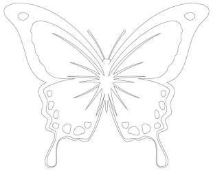 Butterflies Templates 30 Butterfly Outlines
