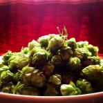 Our hops. our hops. our hops our hops our hops... check it out!