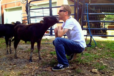 dave and cow