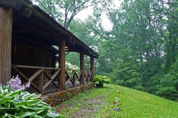 free stock of log cabin