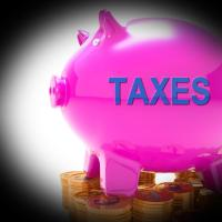 Get Free Stock Photos of Taxes Piggy Bank Coins Means