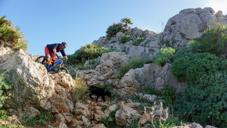 Rocky Sicilia Mountainbike