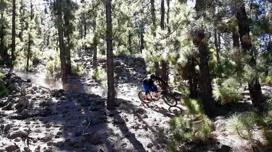 Teide trail